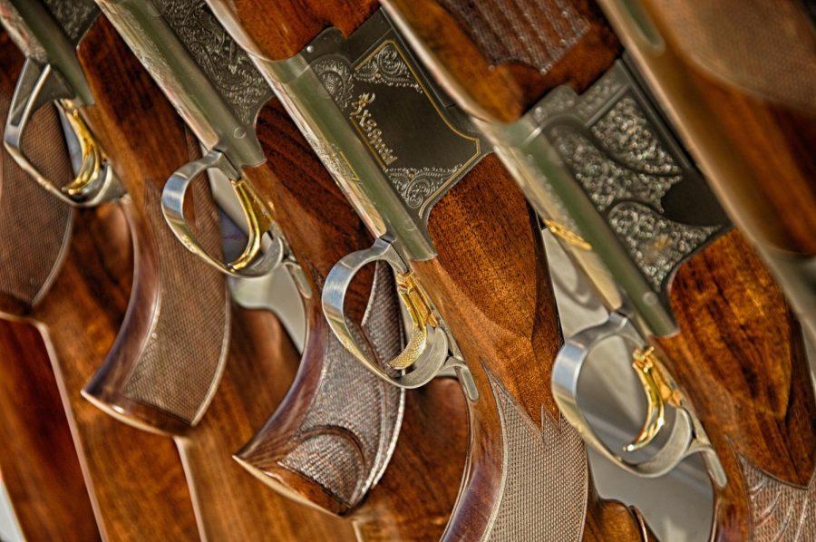 Top 2 Myths About Gun Control