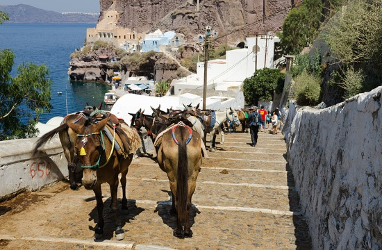 Greece Bans Overweight Tourists From Riding Donkeys