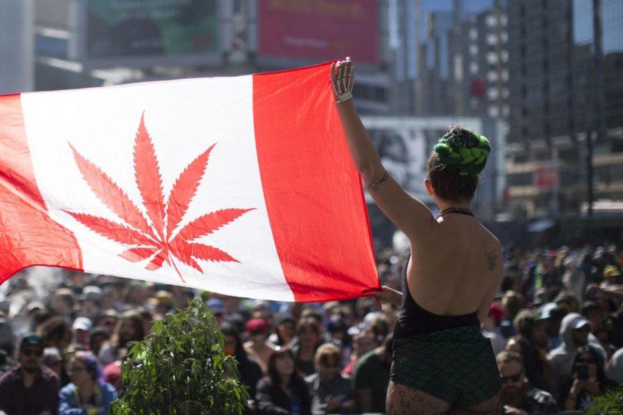 Canada: The Largest Legal Marijuana Marketplace