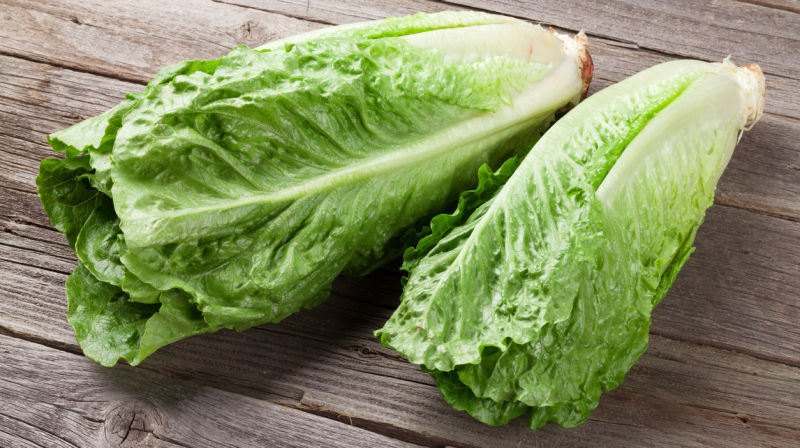 Romaine+lettuce+tainted+with+E.+coli+bacteria.%0APhoto+credits%3A+Cal+Coast+News