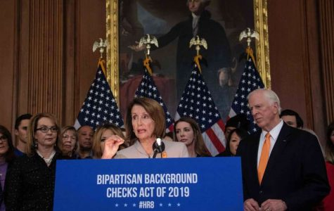 Democrats Propose Bill to Strengthen Background Checks on Firearm Sales