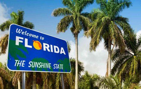 Florida Lawmakers Propose a Bill to Legalize Recreational Marijuana