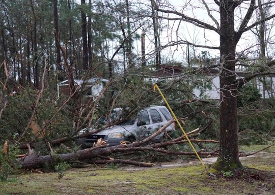 A vehicle trapped under fallen trees in the aftermath of the tornadoes that hit Alabama on Sunday.