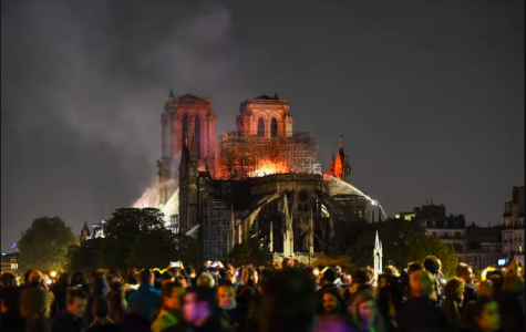 Long Live The Beloved Notre-Dame De Paris