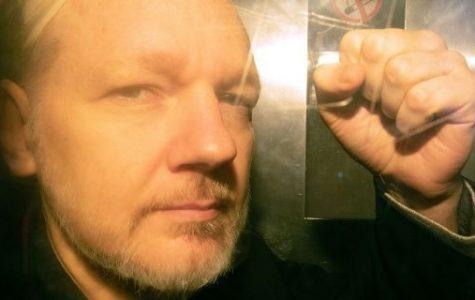Julian Assange, Founder of Wikileaks, Sentence to 50 Weeks in Prison