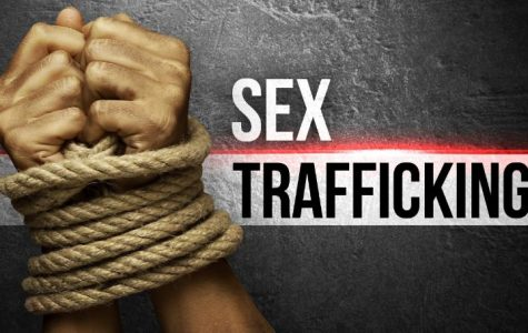 Florida 13-year-old Nicknamed 'breadwinner' by Sex Traffickers