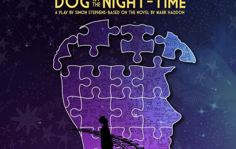 The Curious Incident of the Dog in the Night Time: A Main Stage Performance