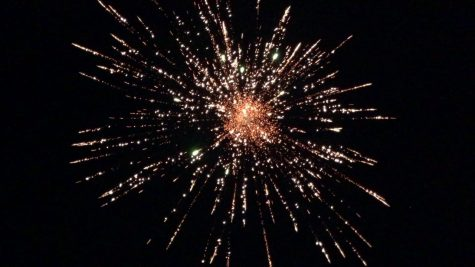 Image of a firework taken from Wikipedia.