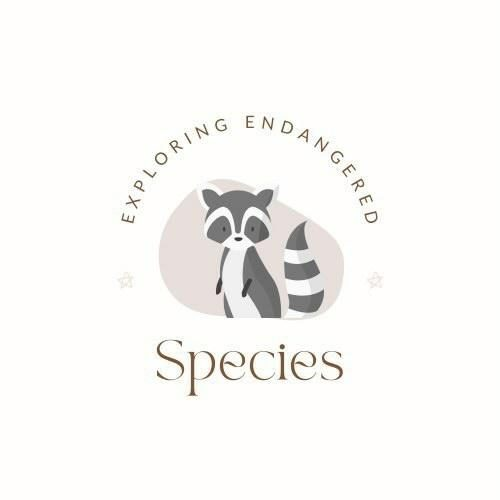 Exploring Endangered Species